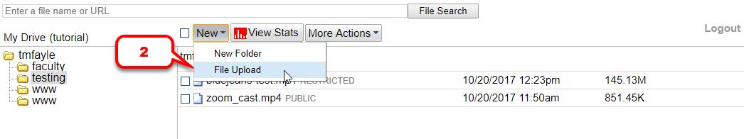 Select New-File Upload