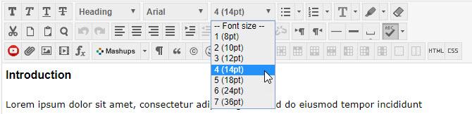 Blackboard text editor 14 point font