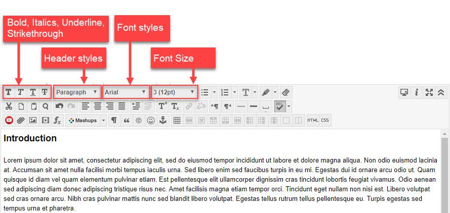 Blackboard Text Editor Styles